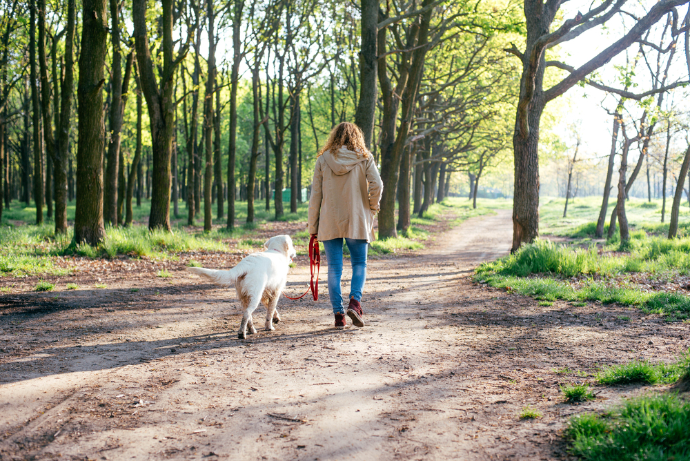 woman_dog_path